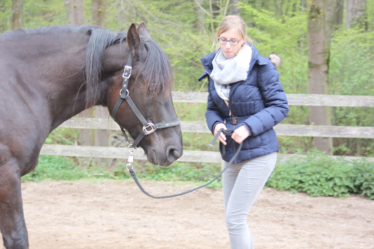 Ausflug-Pferde_025