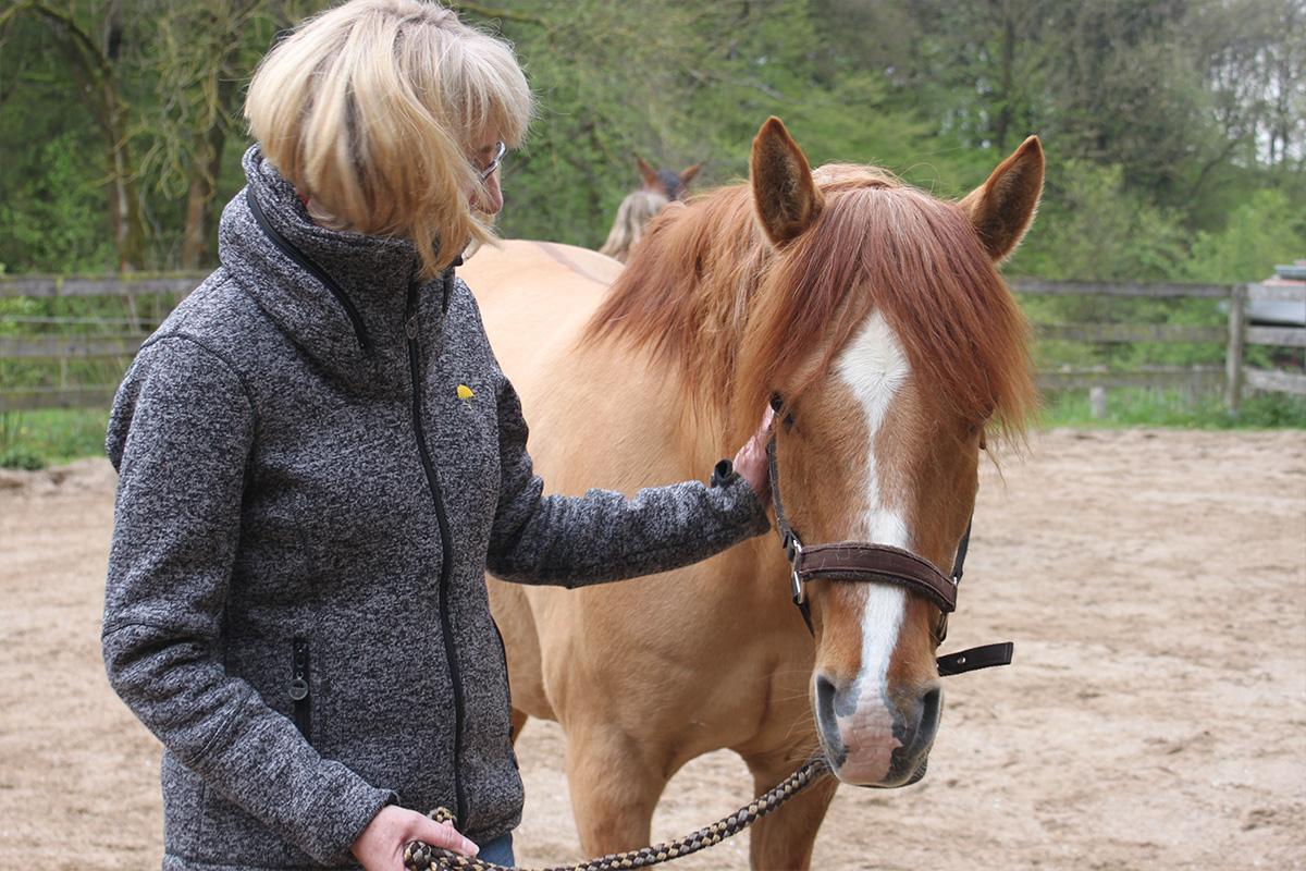 Ausflug-Pferde_026