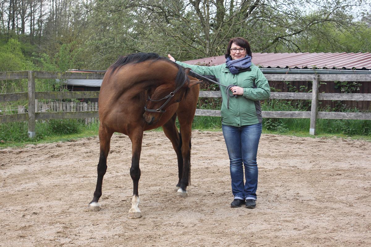 Ausflug-Pferde_028
