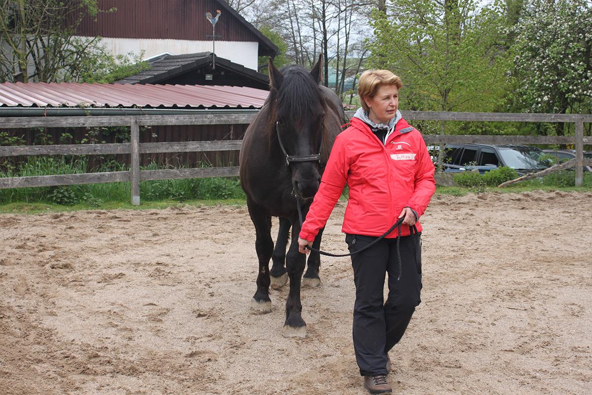 Ausflug-Pferde_030